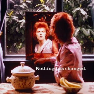 David Bowie - Nothing Has Changed (2LP)