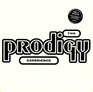 The Prodigy - Experience (2LP)